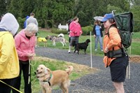 Click to view album: Briggs Spay Today 5K/10K fundraiser