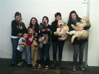 Click to view album: Doggie Birthday Party at Posh Pets Boutique
